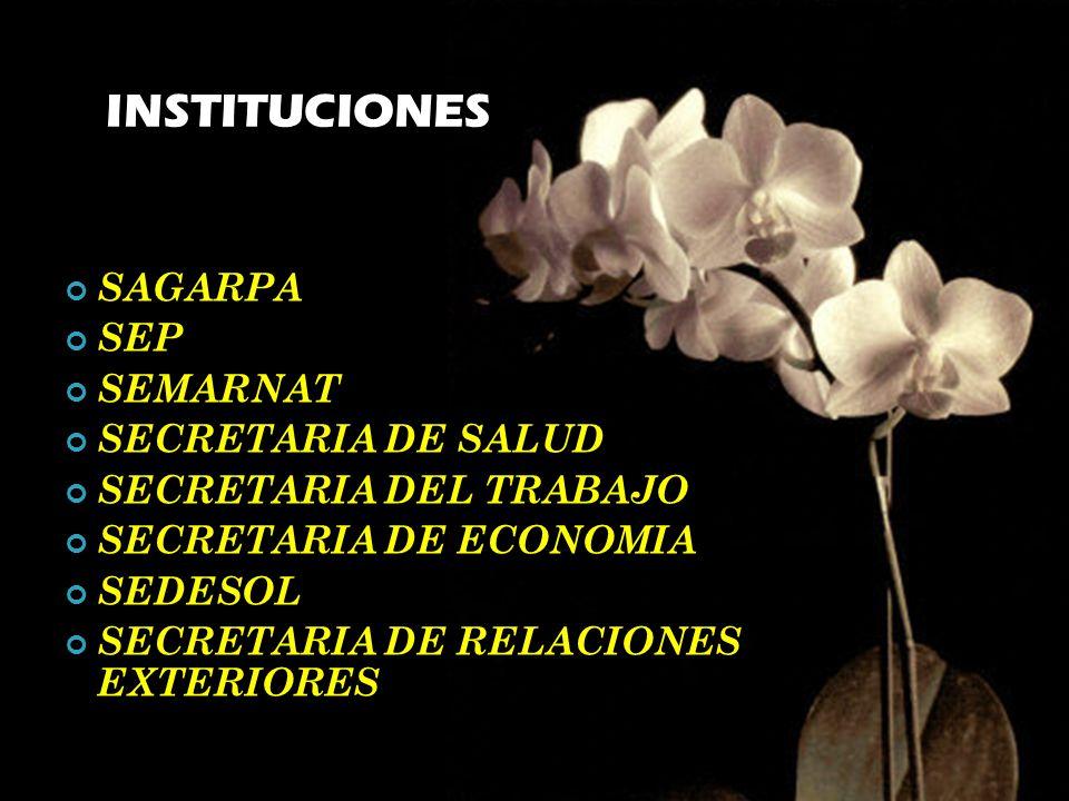 INSTITUCIONES SAGARPA SEP SEMARNAT SECRETARIA DE SALUD