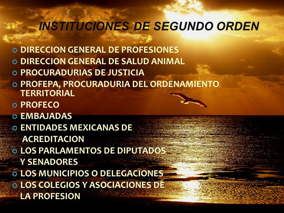 INSTITUCIONES DE SEGUNDO ORDEN