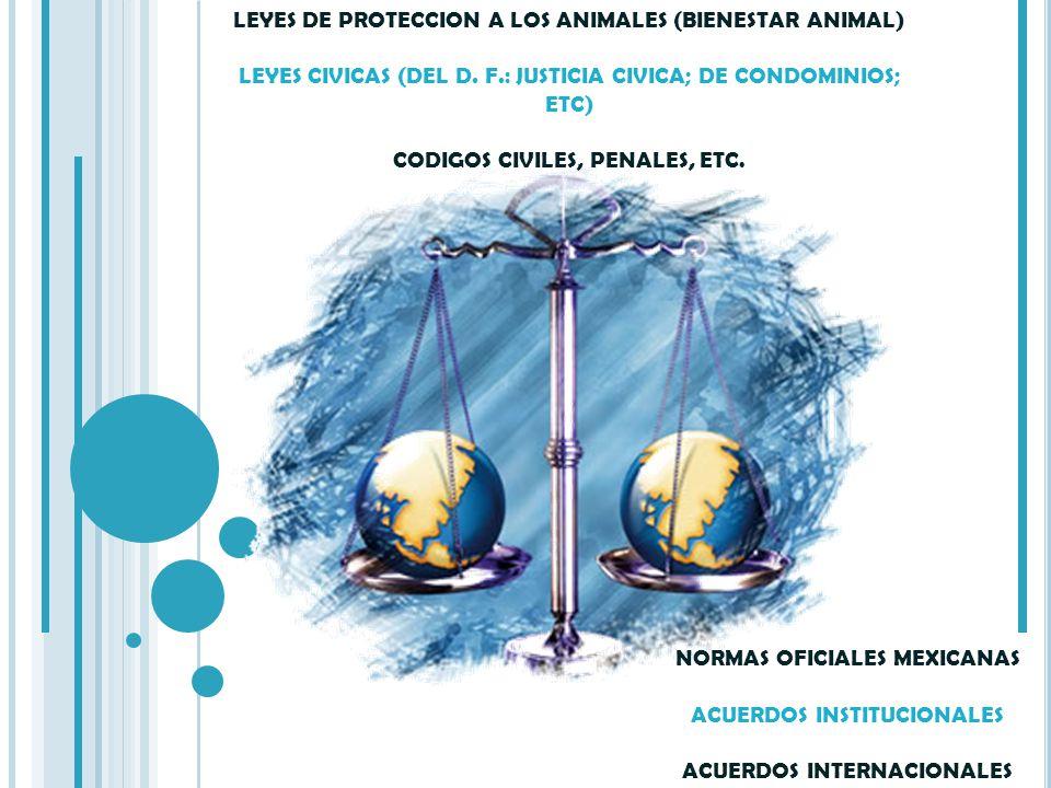 LEYES DE PROTECCION A LOS ANIMALES (BIENESTAR ANIMAL) LEYES CIVICAS (DEL D. F.: JUSTICIA CIVICA; DE CONDOMINIOS; ETC) CODIGOS CIVILES, PENALES, ETC.