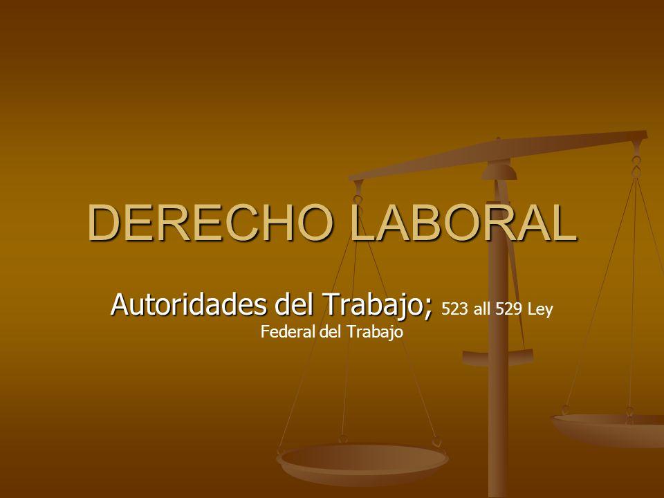 Autoridades del Trabajo; 523 all 529 Ley Federal del Trabajo