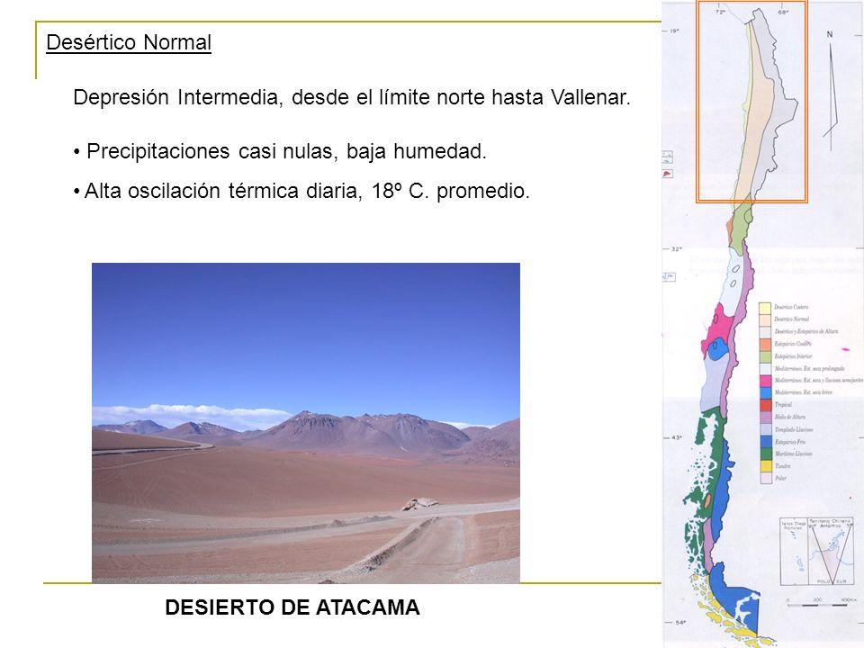 Desértico Normal Depresión Intermedia, desde el límite norte hasta Vallenar. Precipitaciones casi nulas, baja humedad.
