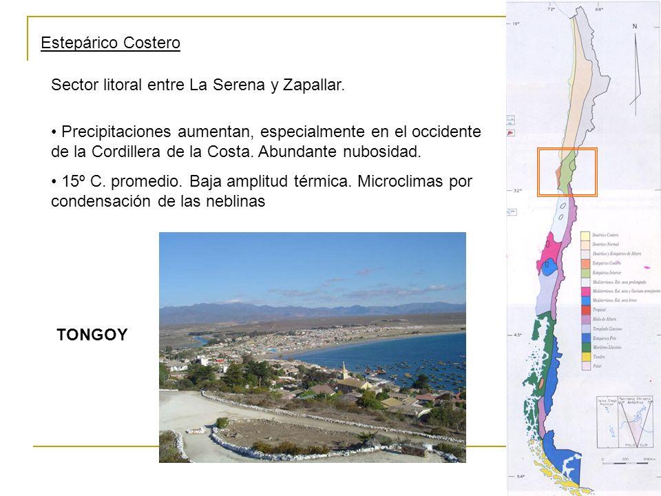 Estepárico Costero Sector litoral entre La Serena y Zapallar.
