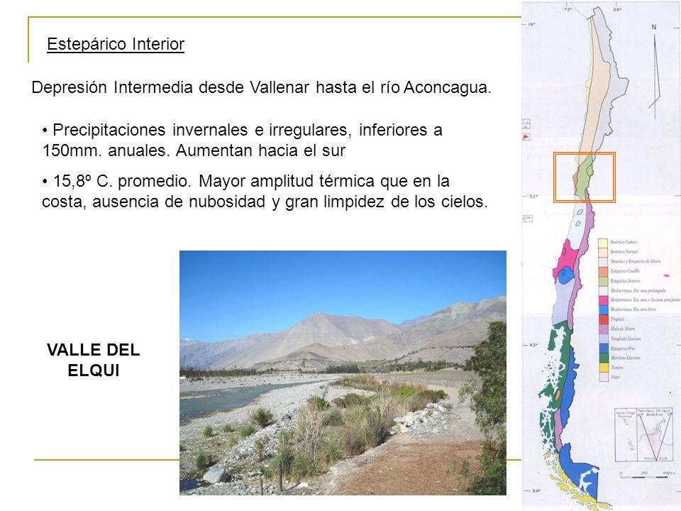 Estepárico Interior Depresión Intermedia desde Vallenar hasta el río Aconcagua.