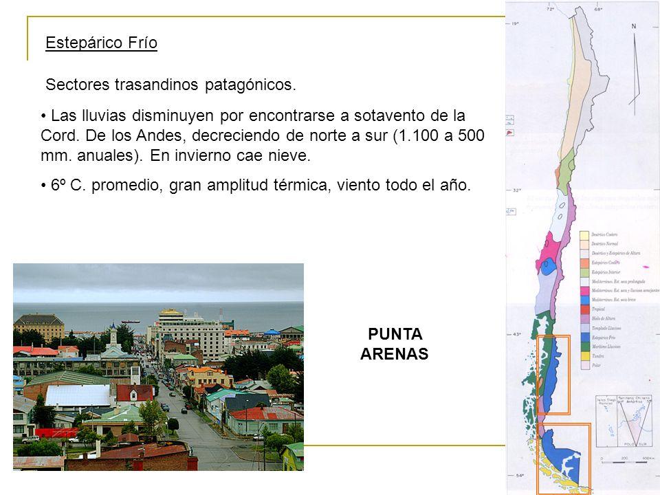 Estepárico Frío Sectores trasandinos patagónicos.