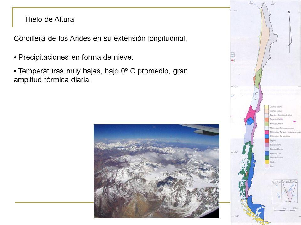 Hielo de Altura Cordillera de los Andes en su extensión longitudinal. Precipitaciones en forma de nieve.