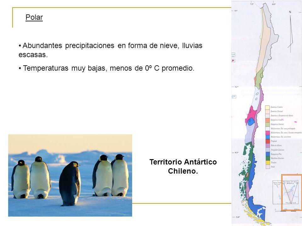 Territorio Antártico Chileno.