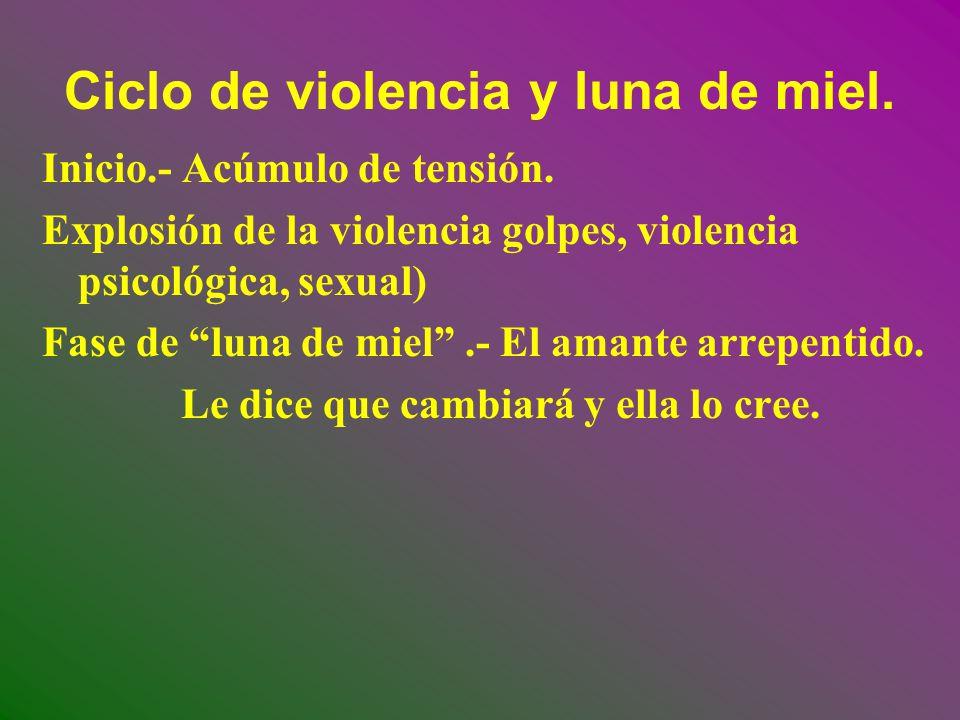 Ciclo de violencia y luna de miel.