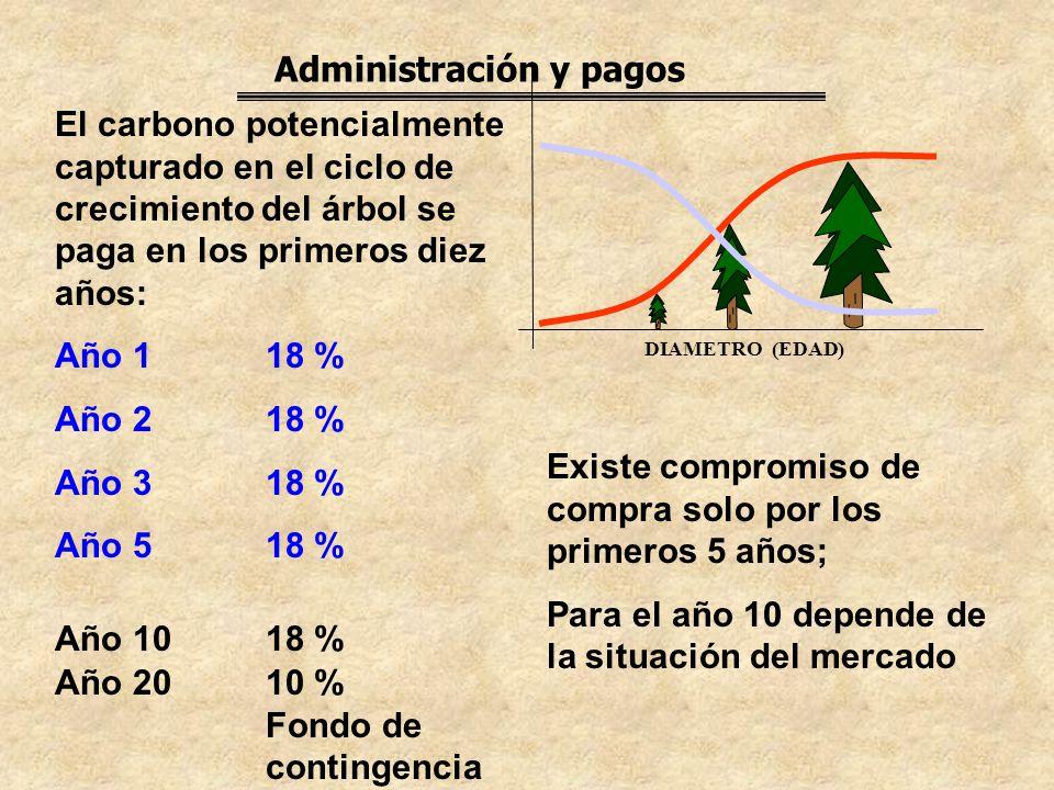 Administración y pagos