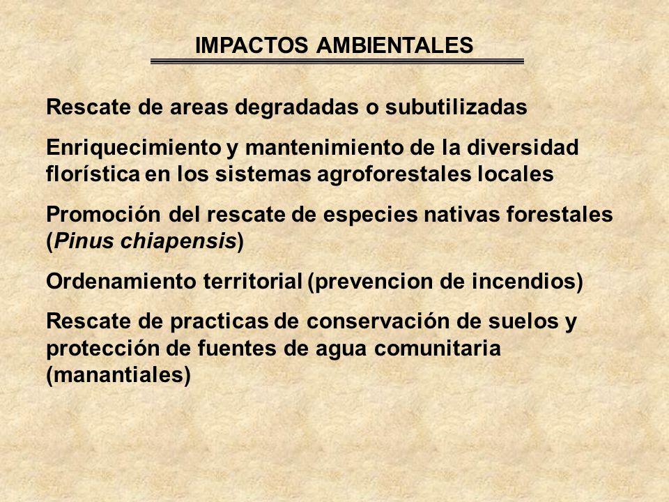 IMPACTOS AMBIENTALES Rescate de areas degradadas o subutilizadas.