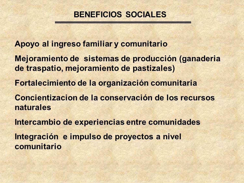 BENEFICIOS SOCIALES Apoyo al ingreso familiar y comunitario.
