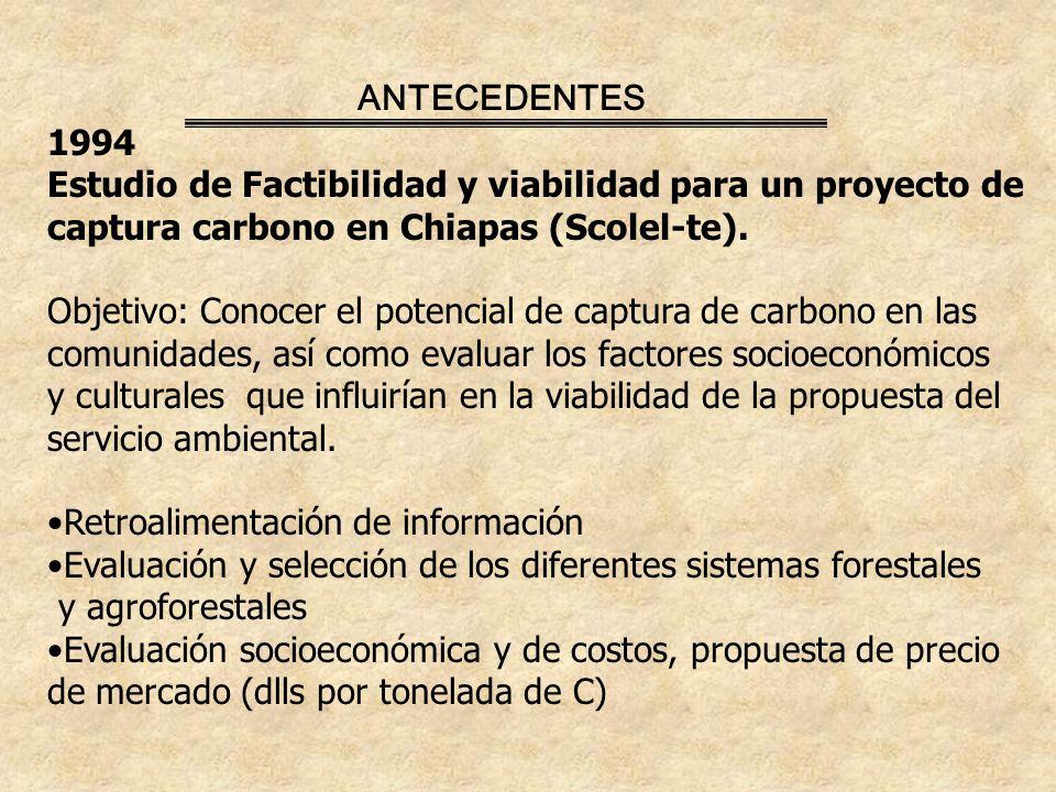ANTECEDENTES 1994. Estudio de Factibilidad y viabilidad para un proyecto de. captura carbono en Chiapas (Scolel-te).
