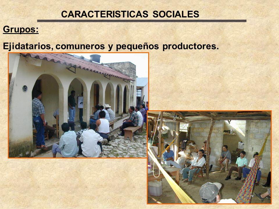 CARACTERISTICAS SOCIALES