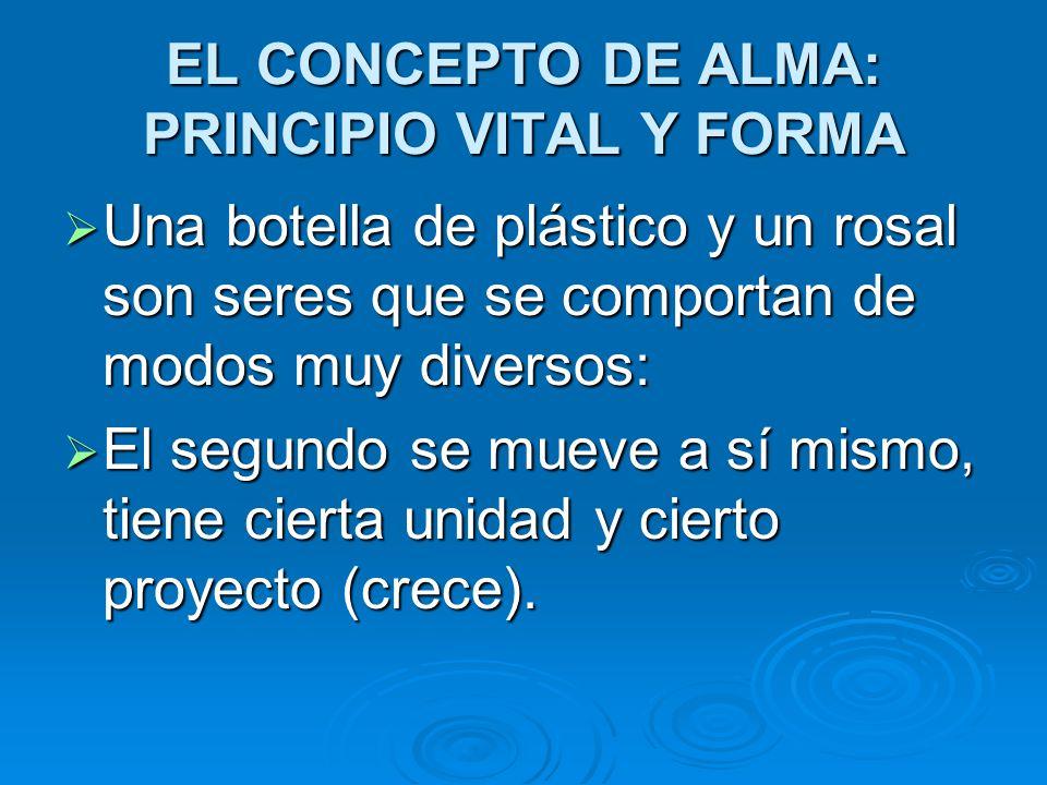 EL CONCEPTO DE ALMA: PRINCIPIO VITAL Y FORMA