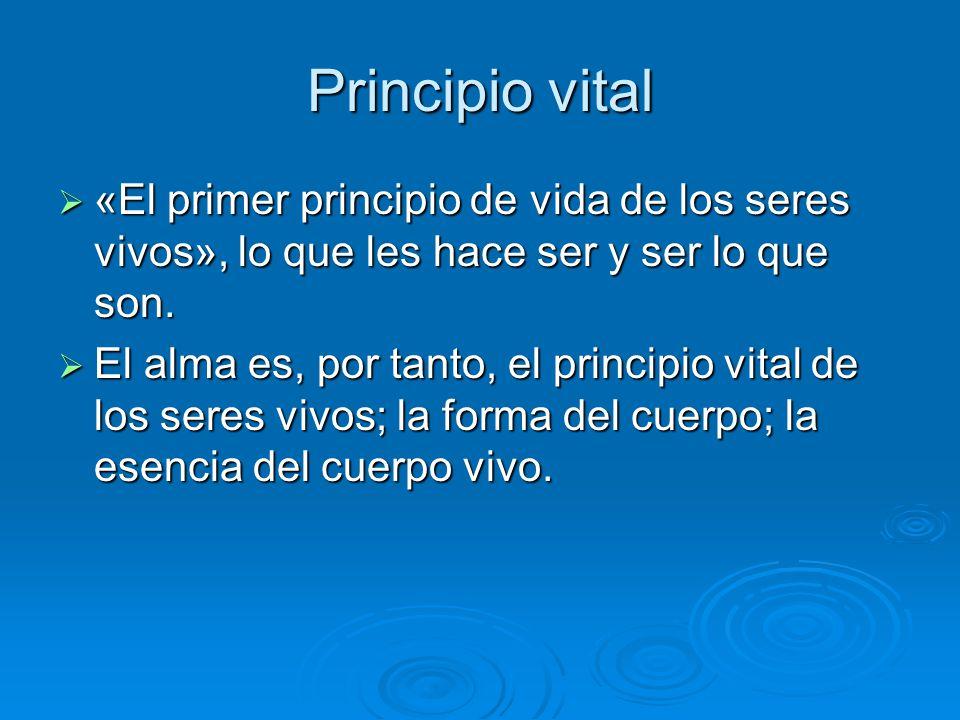 Principio vital «El primer principio de vida de los seres vivos», lo que les hace ser y ser lo que son.