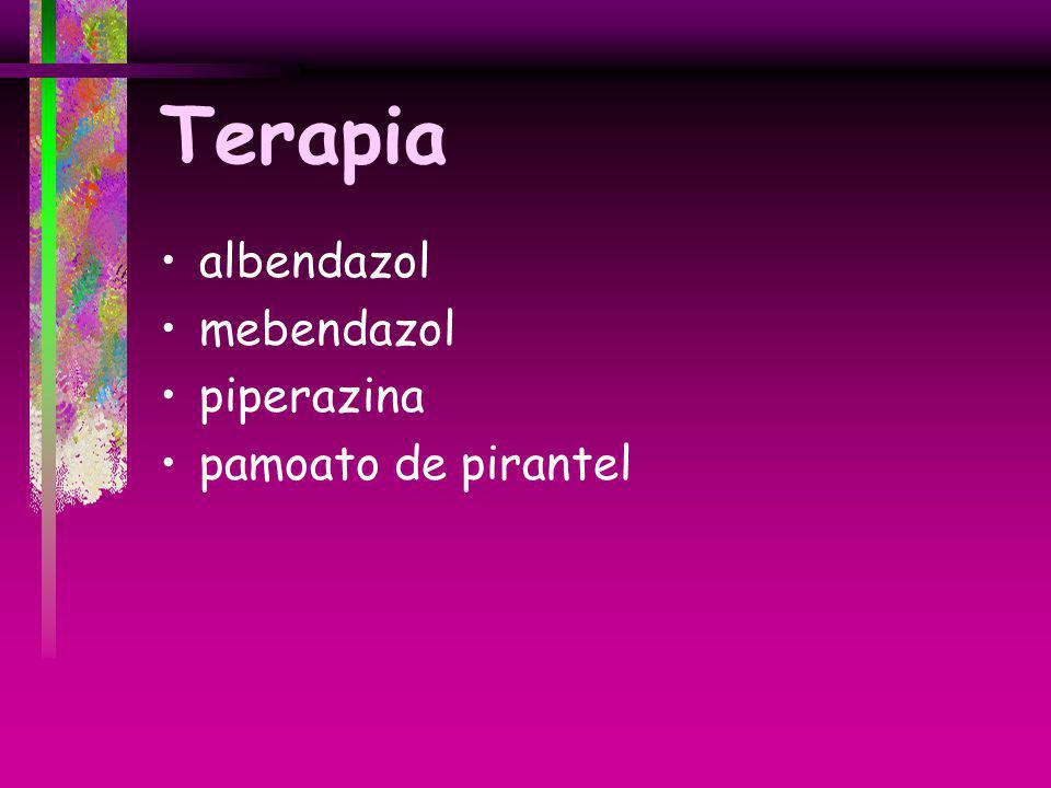Terapia albendazol mebendazol piperazina pamoato de pirantel
