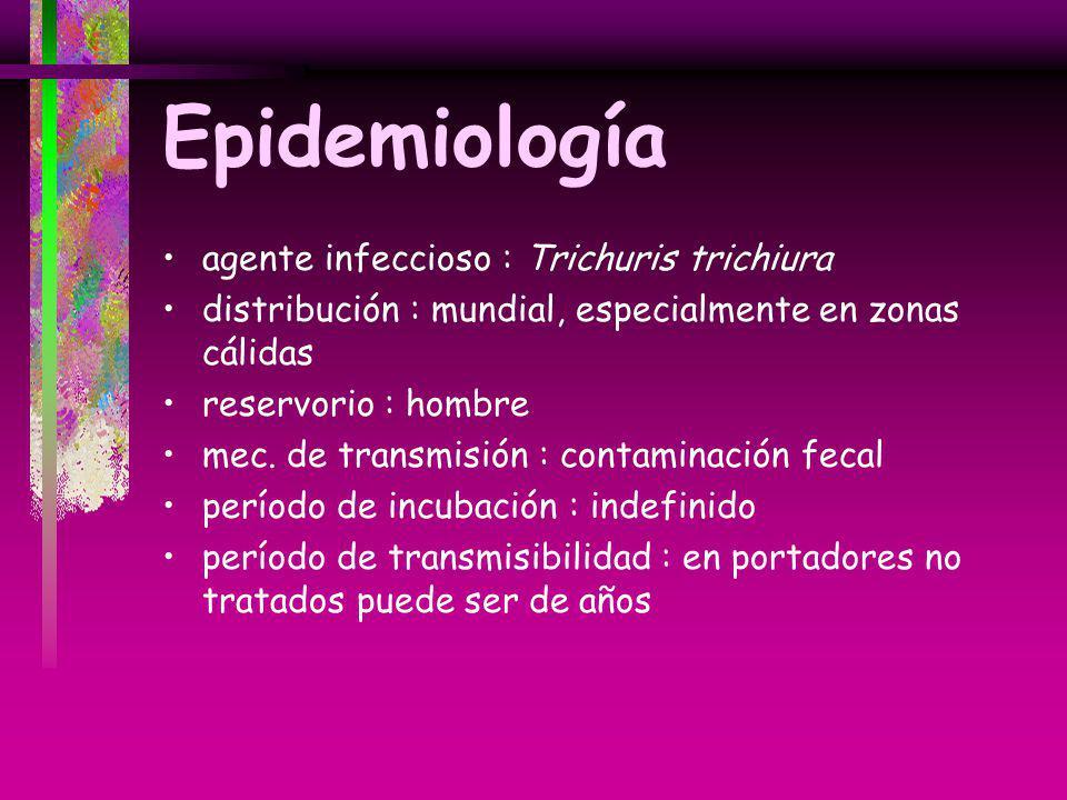 Epidemiología agente infeccioso : Trichuris trichiura