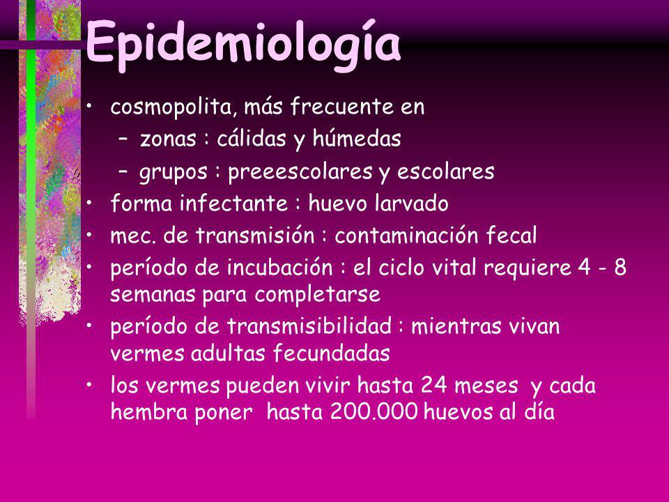 Epidemiología cosmopolita, más frecuente en zonas : cálidas y húmedas