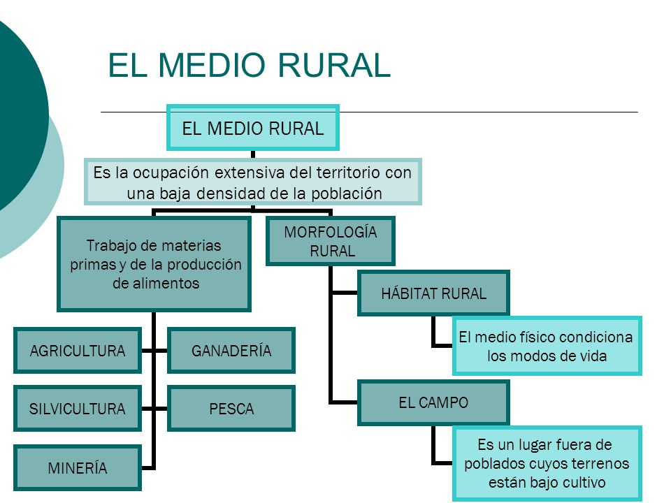 EL MEDIO RURAL