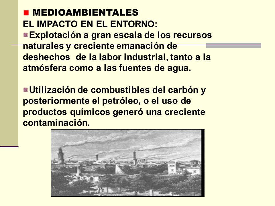 MEDIOAMBIENTALES EL IMPACTO EN EL ENTORNO: