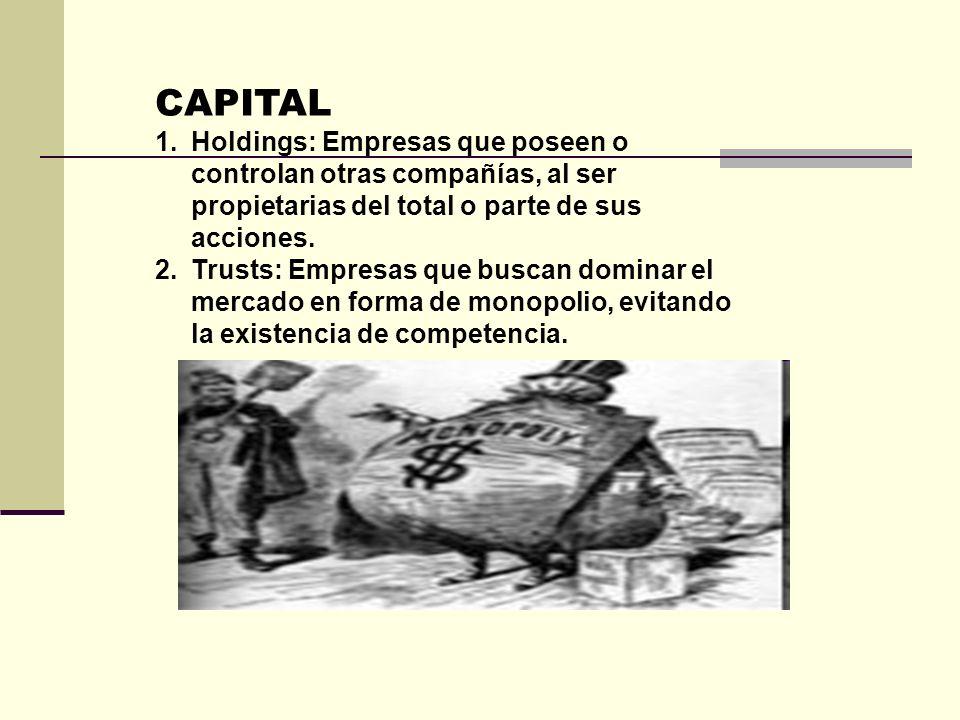CAPITALHoldings: Empresas que poseen o controlan otras compañías, al ser propietarias del total o parte de sus acciones.