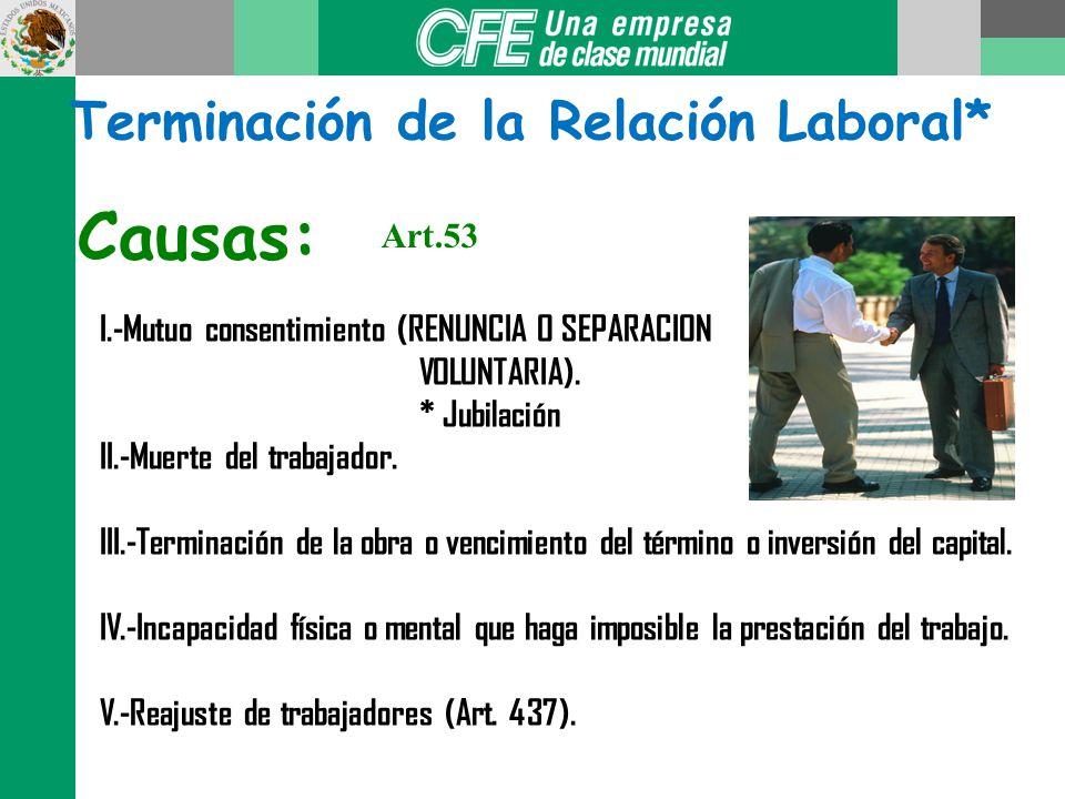 Terminación de la Relación Laboral*
