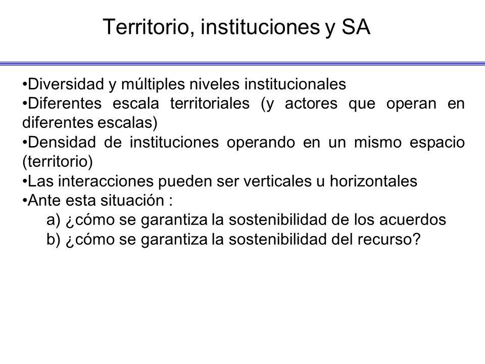 Territorio, instituciones y SA