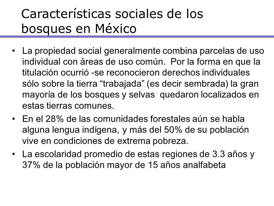 Características sociales de los bosques en México