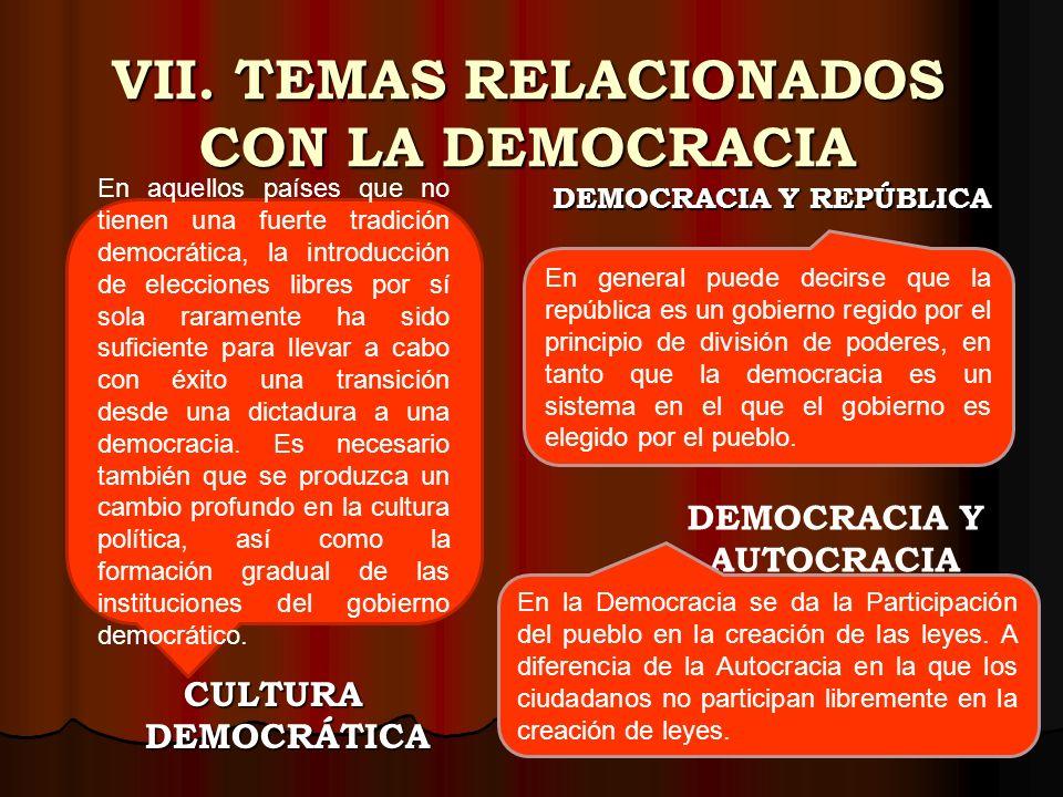 VII. TEMAS RELACIONADOS CON LA DEMOCRACIA