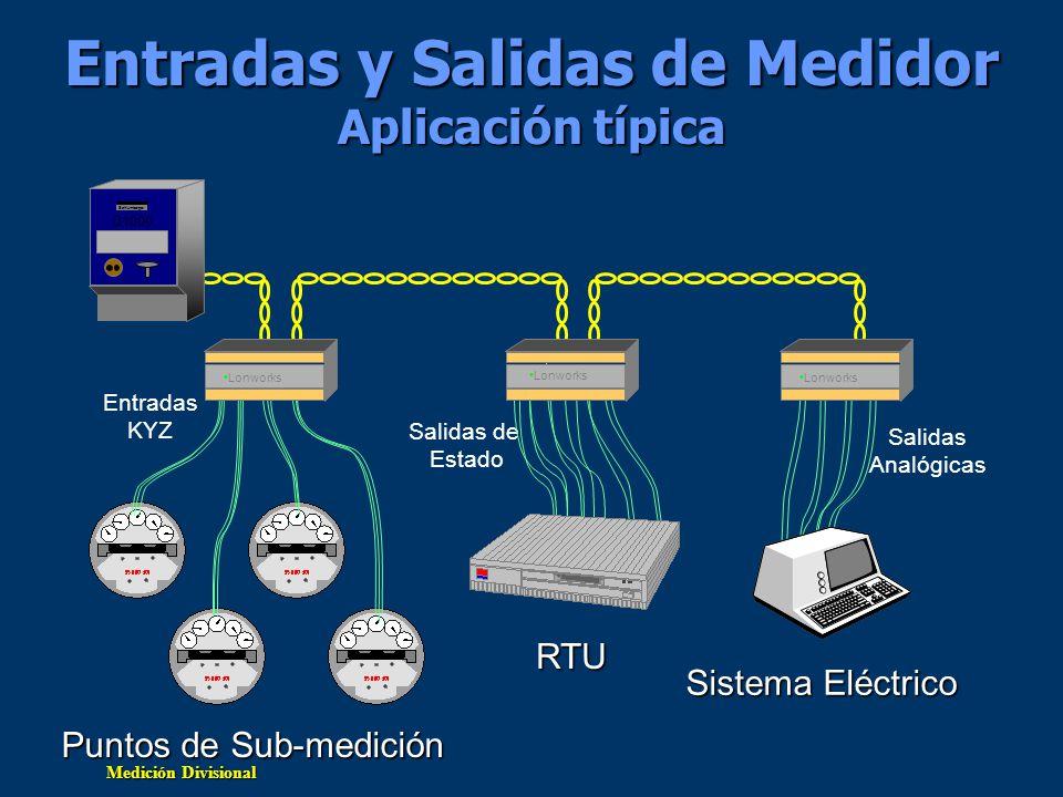 Entradas y Salidas de Medidor Aplicación típica