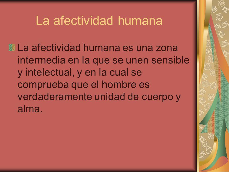 La afectividad humana
