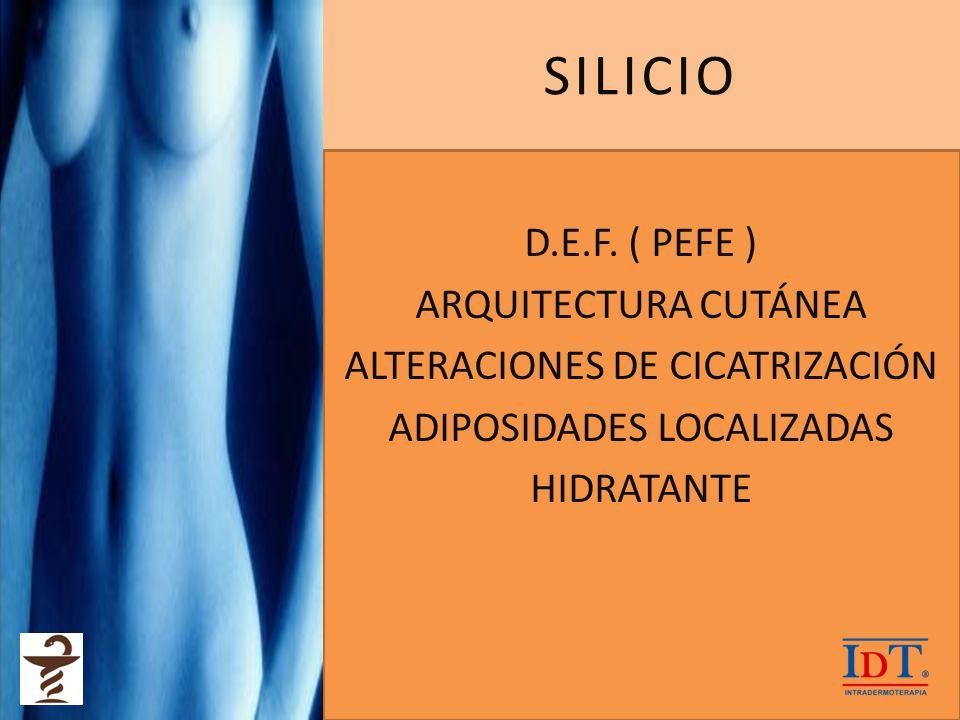SILICIO D.E.F. ( PEFE ) ARQUITECTURA CUTÁNEA