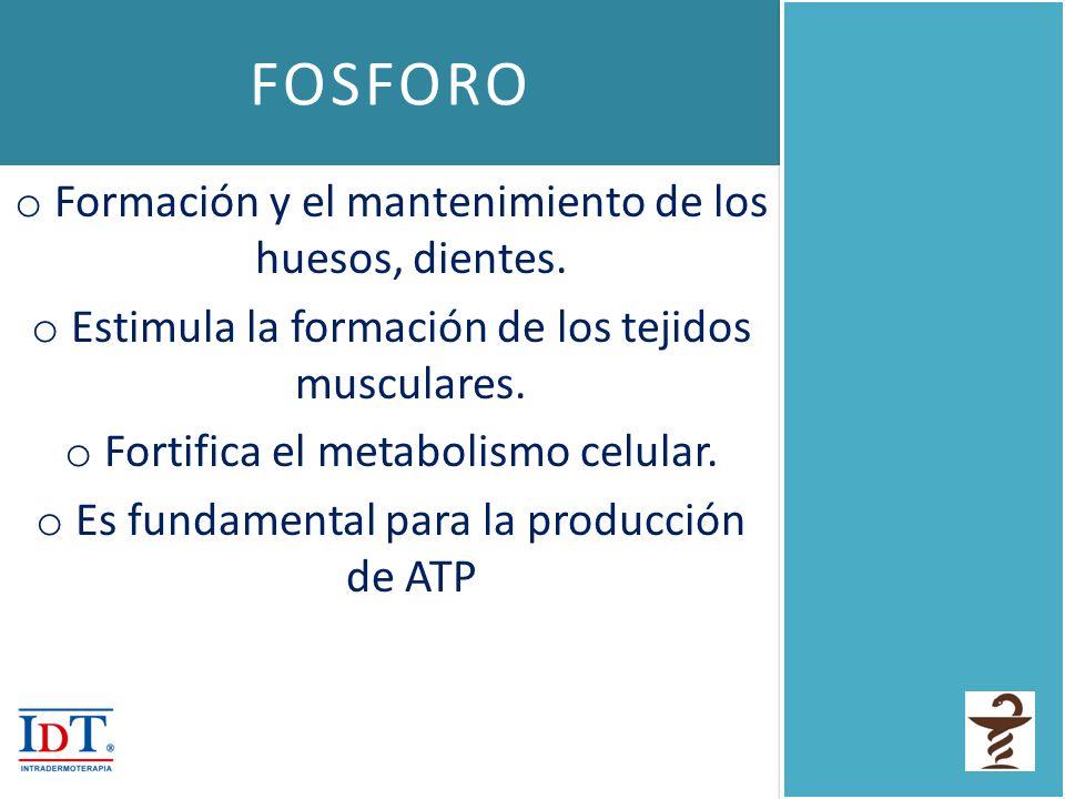 FOSFORO Formación y el mantenimiento de los huesos, dientes.