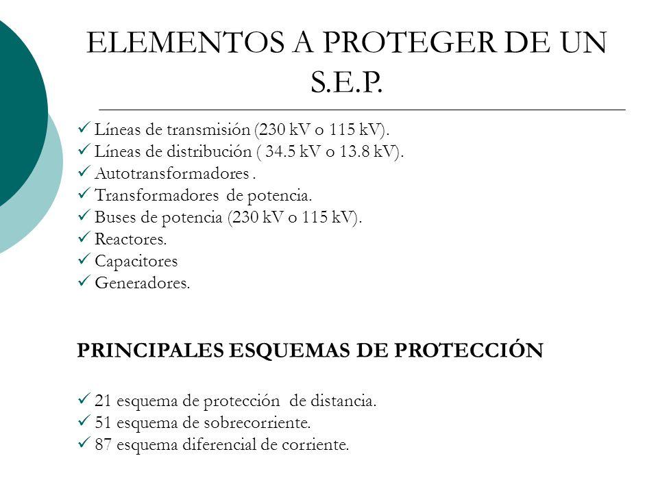 ELEMENTOS A PROTEGER DE UN S.E.P.