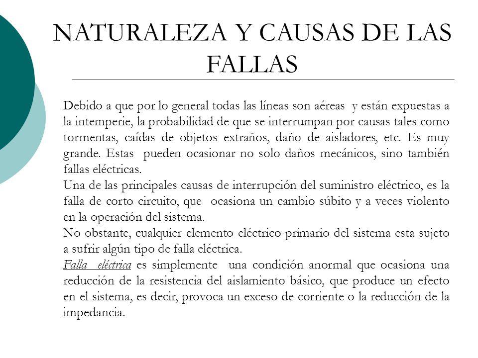 NATURALEZA Y CAUSAS DE LAS FALLAS
