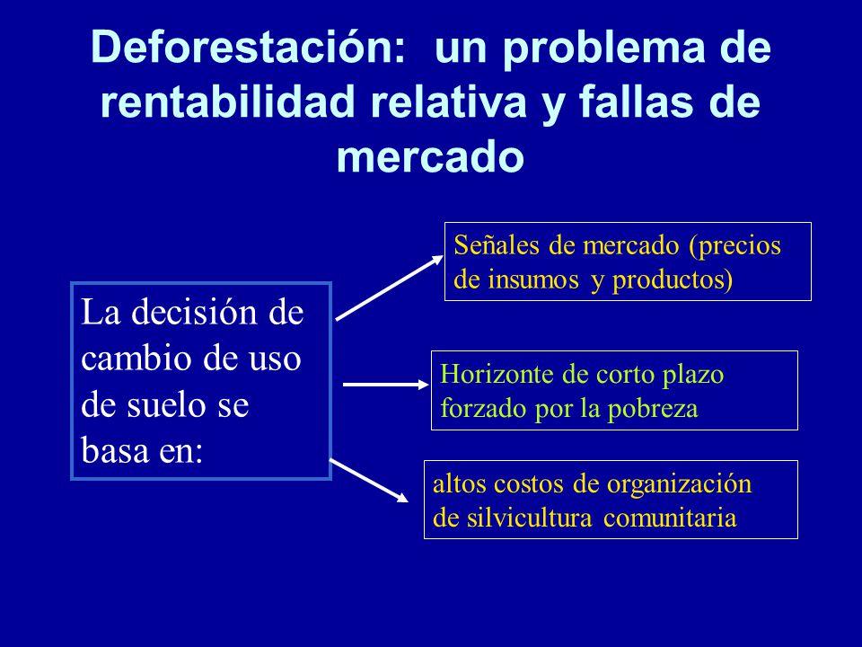 Deforestación: un problema de rentabilidad relativa y fallas de mercado
