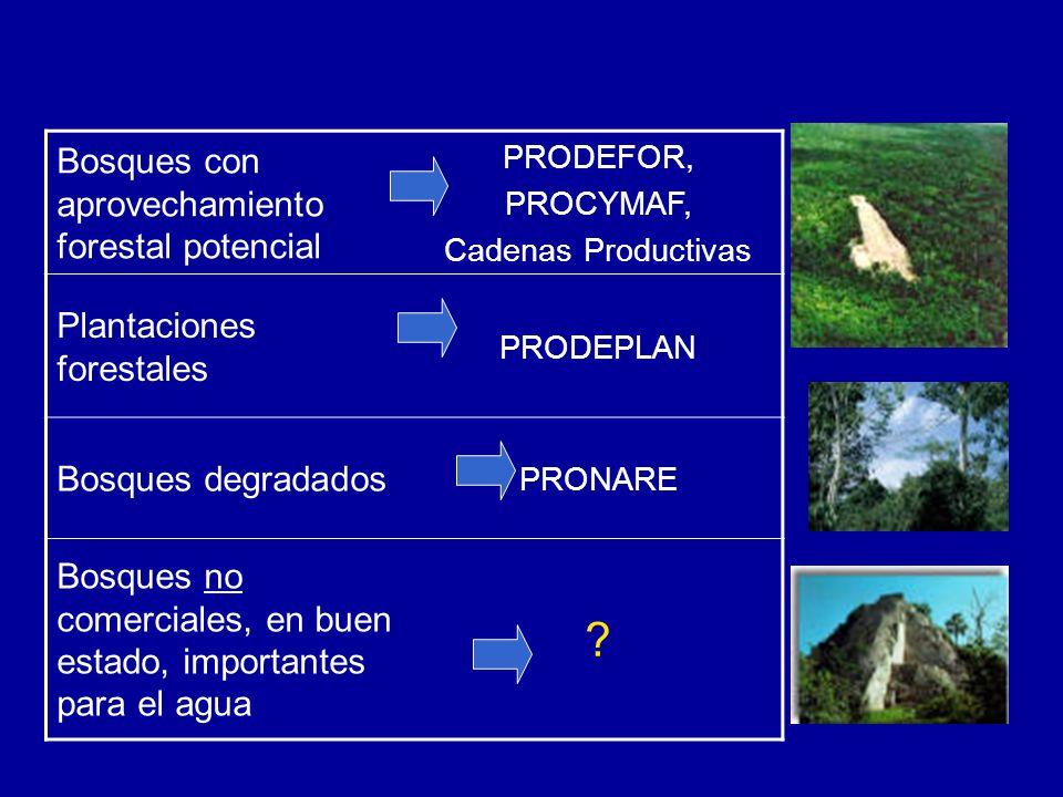 Bosques con aprovechamiento forestal potencial