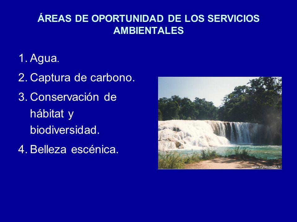 ÁREAS DE OPORTUNIDAD DE LOS SERVICIOS AMBIENTALES