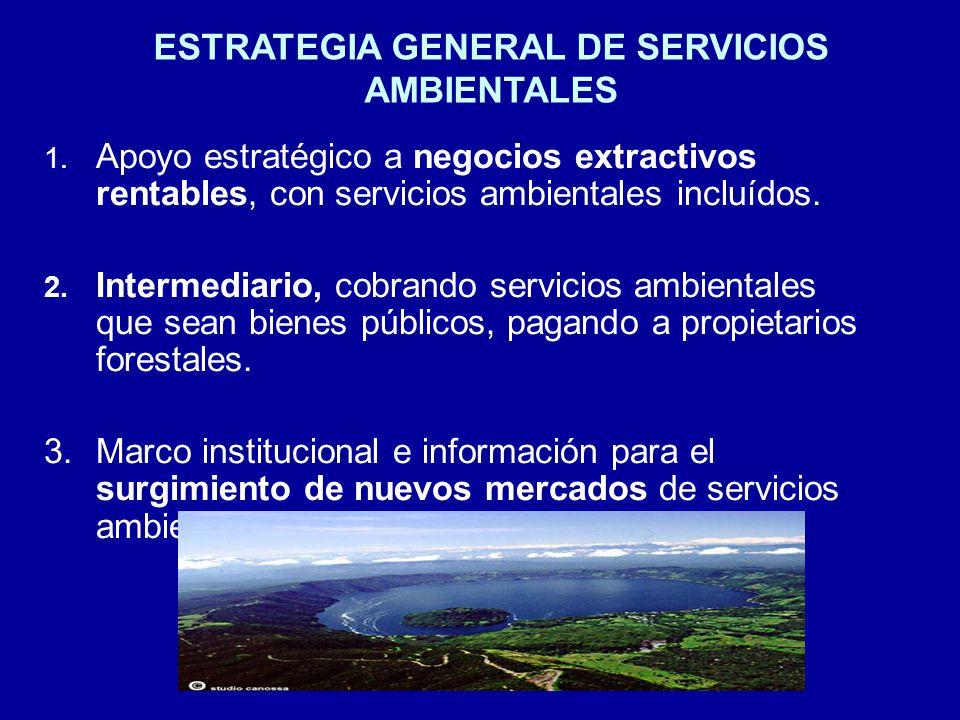 ESTRATEGIA GENERAL DE SERVICIOS AMBIENTALES