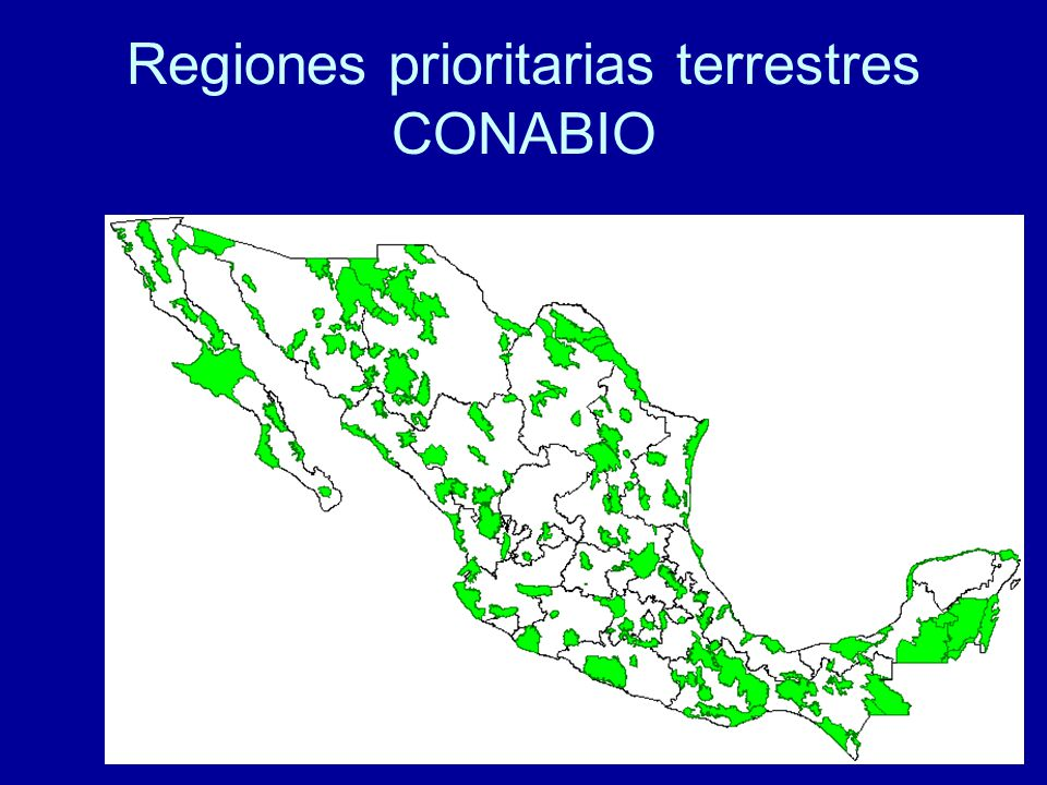 Regiones prioritarias terrestres CONABIO