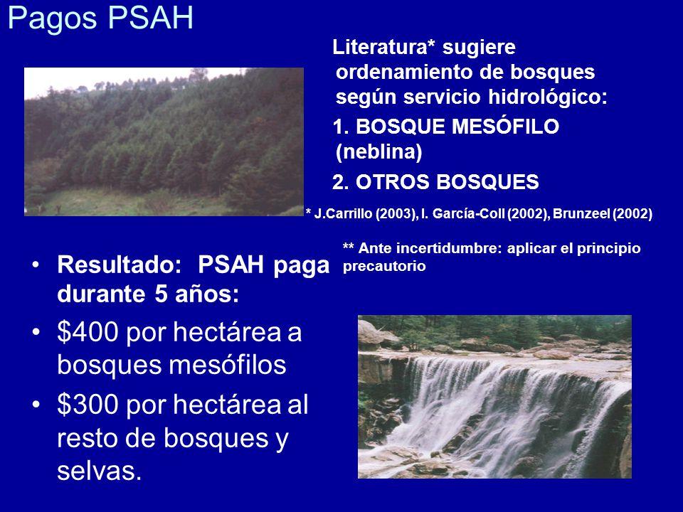 Pagos PSAH $400 por hectárea a bosques mesófilos