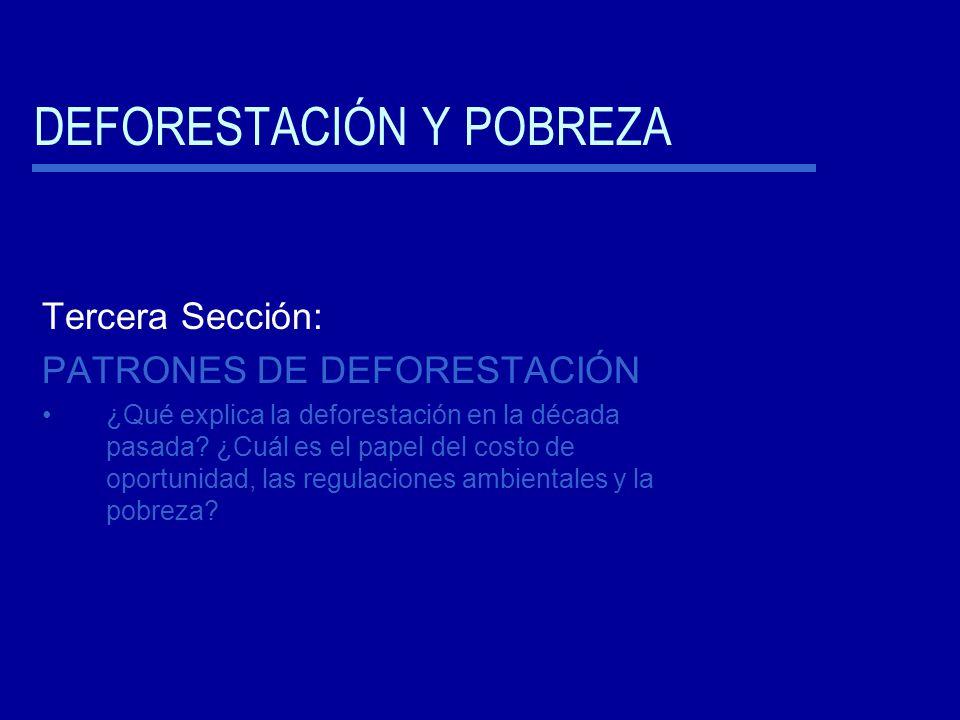 DEFORESTACIÓN Y POBREZA