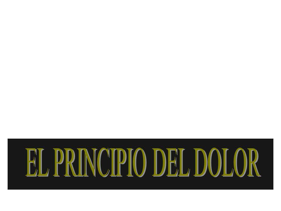 EL PRINCIPIO DEL DOLOR