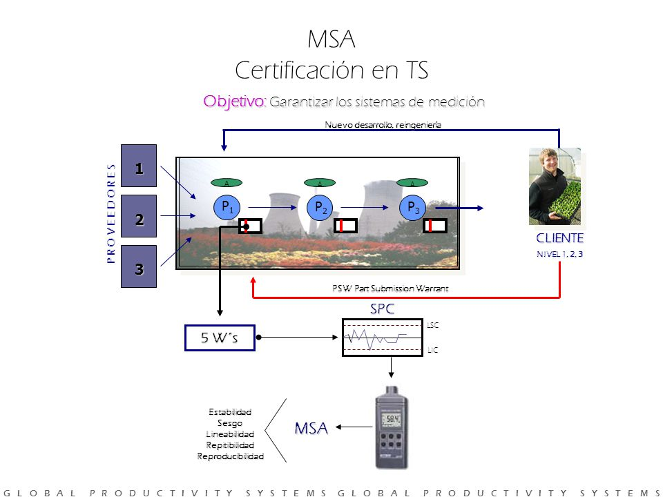 MSA Certificación en TS