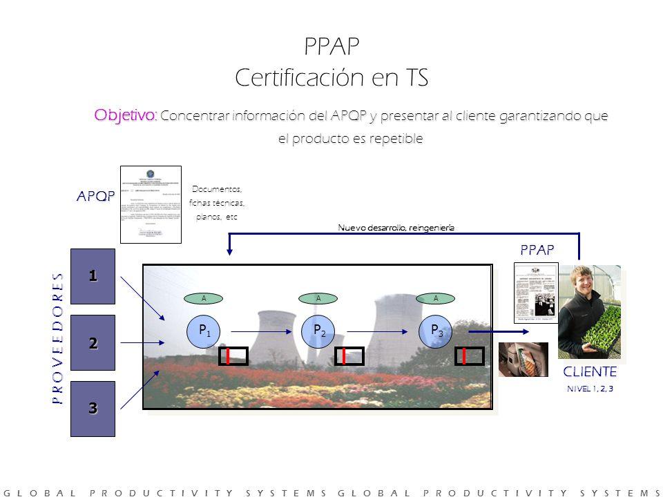 PPAP Certificación en TS