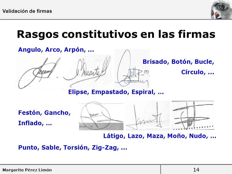 Rasgos constitutivos en las firmas
