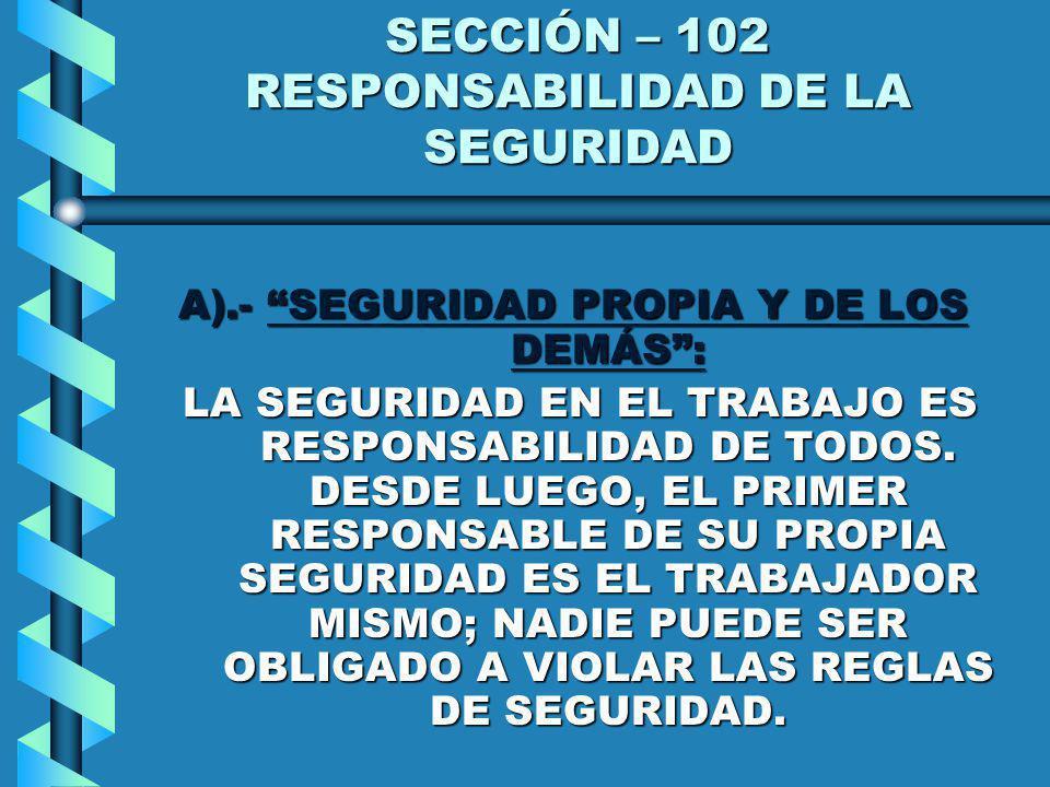 SECCIÓN – 102 RESPONSABILIDAD DE LA SEGURIDAD