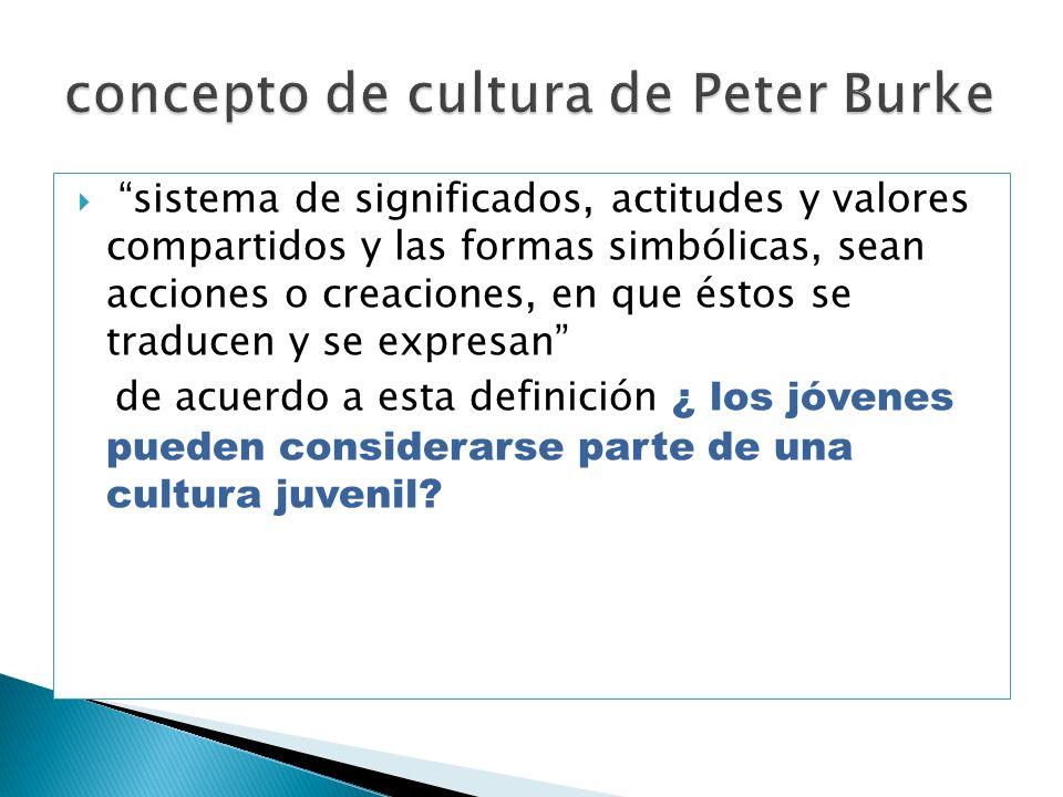 concepto de cultura de Peter Burke