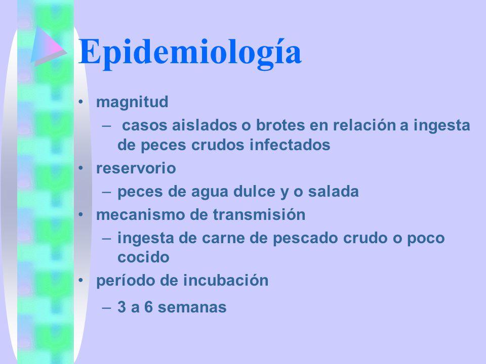 Epidemiología magnitud