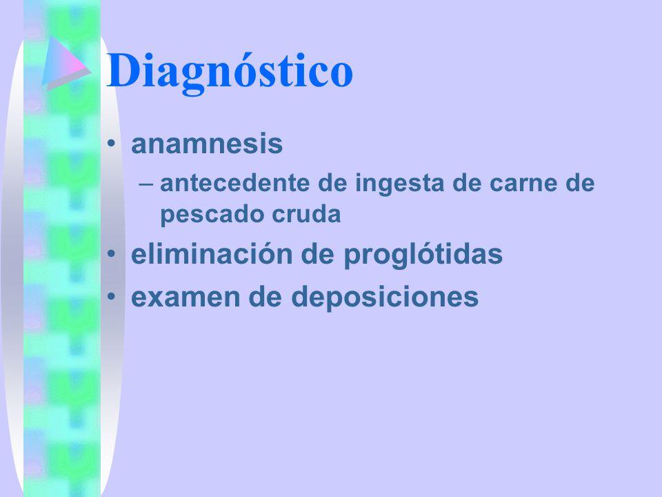 Diagnóstico anamnesis eliminación de proglótidas