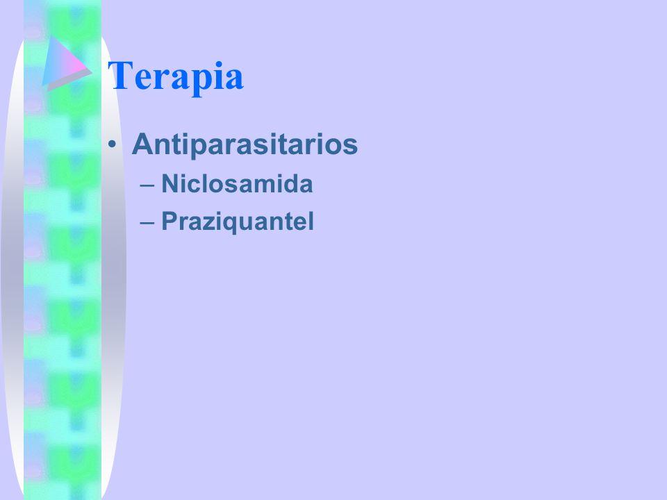 Terapia Antiparasitarios Niclosamida Praziquantel